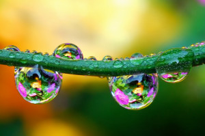 waterdrops01
